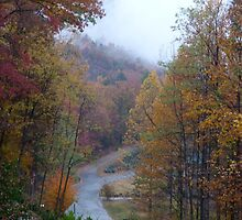 Autumn Rain by Gordon Taylor