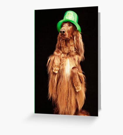 Irish Charmer Greeting Card