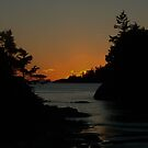 MacKenzie Beach at Sunset by mr-scruffles