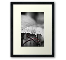 sustenance Framed Print