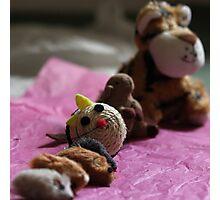 Missy's toys Photographic Print