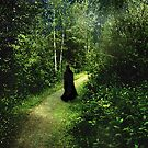 The Pilgrimage by RC deWinter