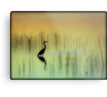 Morning on The Lake Metal Print