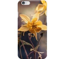 Yellow columbine flowers  iPhone Case/Skin