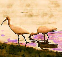 Herons at Play by DeerPhotoArts