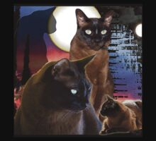 Burmese Cats and the Moon Kids Clothes