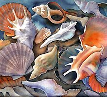 Box of Shells II by Karin Zeller