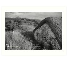 Old Thatch and Summer Grasslands - Killbegs, County Donegal. Art Print