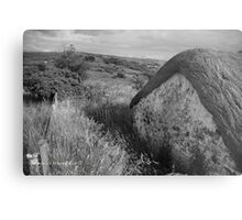 Old Thatch and Summer Grasslands - Killbegs, County Donegal. Metal Print