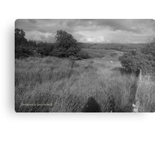 Summer Evening Shadow - County Donegal Landscape. Metal Print