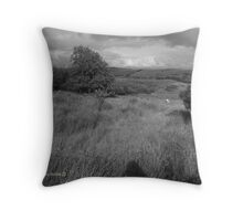 Summer Evening Shadow - County Donegal Landscape. Throw Pillow