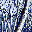 'Winter Trees' by Jerry Kirk