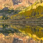 Aspen reflections by michaelmattison