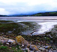 Conwy River, Low TIde by artfulvistas