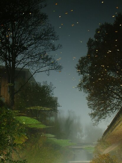 Starry day by Themis