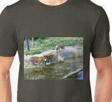 Female Sumatran tiger and three cubs. Unisex T-Shirt