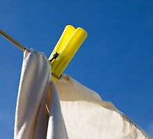 Hung out to dry by Belinda Osgood