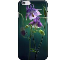 Dark violet columbine flowers iPhone Case/Skin