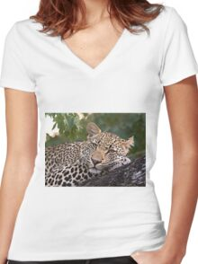 Nyaleti Young Male 2-3 Women's Fitted V-Neck T-Shirt