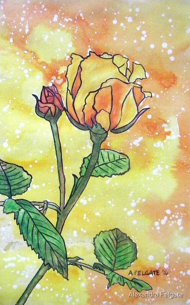 """Golden Celebration"" a David Austin Rose by Alexandra Felgate"
