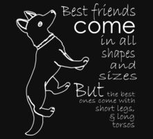 BEST FRIENDS COME IN ALL SHAPES AND SIZE BUT THE BEST ONES COME WITH SHORT LEGS & LONG TORSOS by imprasunna