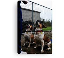 Bulldoggles Canvas Print