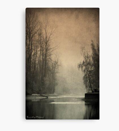 Passages of  Everglades Canvas Print