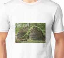 Sculptured rocks  Unisex T-Shirt