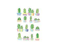 Cute colourful cactus design  by leishadesigns