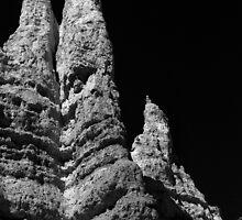 Hoodoo ~ Bryce Canyon by Vicki Pelham