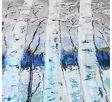 Winter Trees - Collaboration Photographic Print
