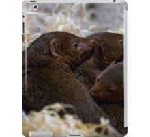 Dwarf Mongoose iPad Case/Skin