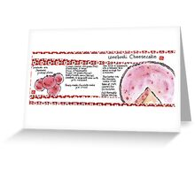 Illustrated Recipe: Umeboshi Cheesecake Greeting Card