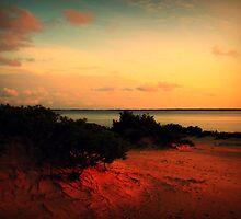Sunset at Jockey's Ridge by Lea  Weikert