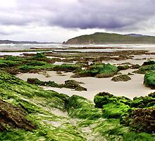 Anvil Beach - Denmark - West Australia by Andy and Von Quinn