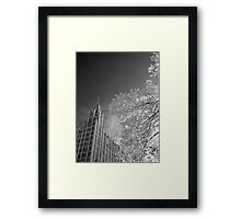 The Manchester Unity Building Framed Print