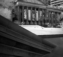 State Library by Alycia Rowe