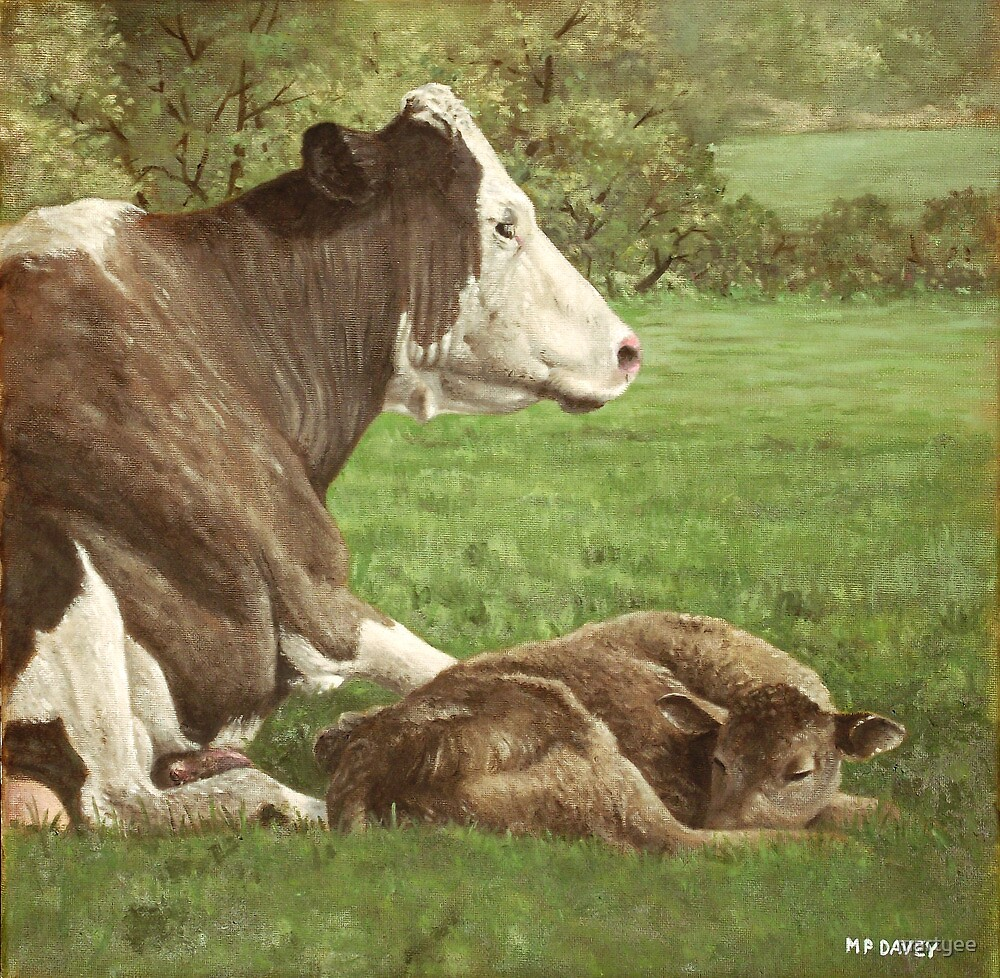 cow and calf in field by martyee