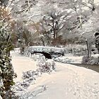 The winter bridge by Lyn Evans