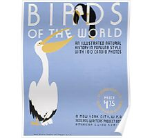 WPA United States Government Work Project Administration Poster 0238 Birds of the World Illustrated Natural History Poster