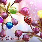 Berry Christmas by Bronwyn Bruce
