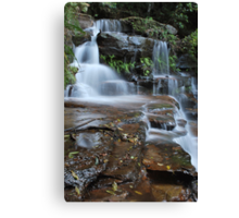 Valley of the Waters. 14-11-10....3 Canvas Print