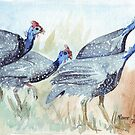 Guinea fowl in my garden by Maree Clarkson