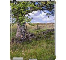 Scottish Countryside iPad Case/Skin