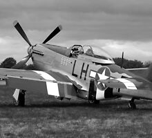 WW2 P51 Mustang Fighter Plane by Chris L Smith
