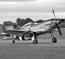 WW2 P51 Mustang Fighter Plane by chris-csfotobiz