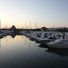 Marina In Portugal At Sunset by damonsphotos