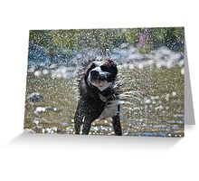 Let's shake it off Greeting Card