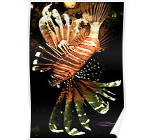 Lionfish ~ Japanese Style! Poster