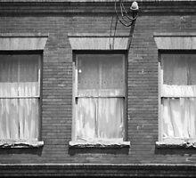 Jonesborough, Tennessee - Three Windows by Frank Romeo